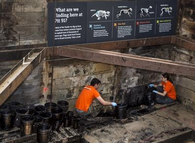 News video: Scientists Resume Digging at Calif. Tar Pits